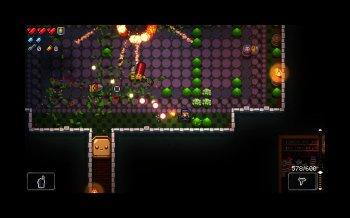Enter The Gungeon: Collector's Edition [v 2.0.4 + DLC] (2016) PC | Лицензия