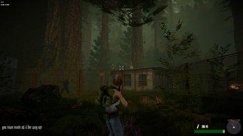 Jane Westlake Adventures - The Mystery Train (2020) PC   Лицензия